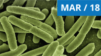 Viable But Not Colonly-Forming Legionella MAR 18