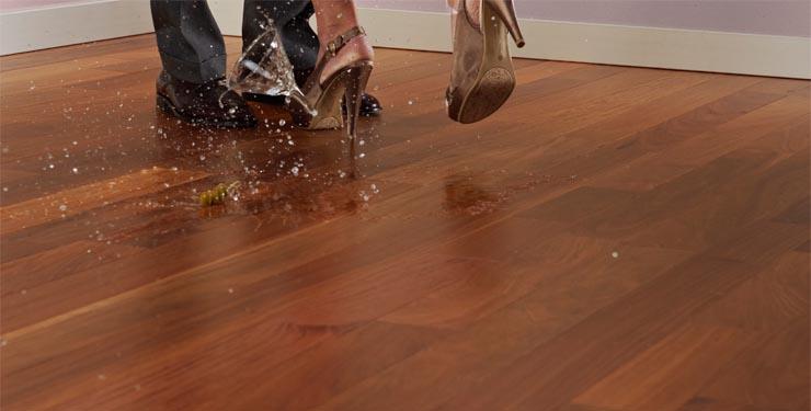 Dog Shoes For Hardwood Floors Wood Floors - Dog shoes for hardwood floors
