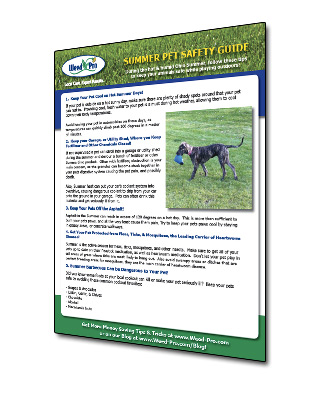 Lawn Care Safety Info Sheet