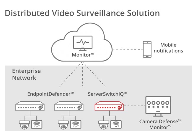 Razberi ServerSwitchIQ™ Optimizes IP Video in the Enterprise