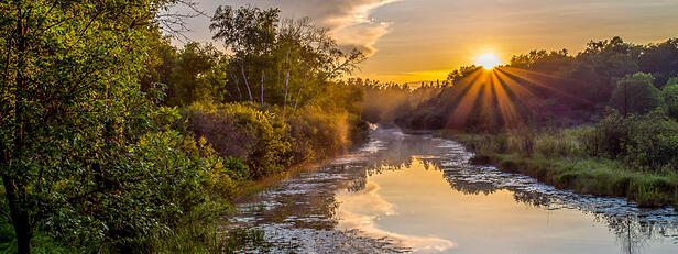 World Wetlands Day is Today, February 2nd. Learn Why Wetlands Are Important.