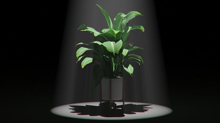 Volumetric Lighting in KeyShot