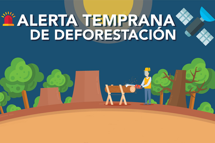 GEO-GEE project: Tackling deforestation and forest degradation in Costa Rica