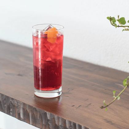 hibiscus-ginger-sparkler-recipe