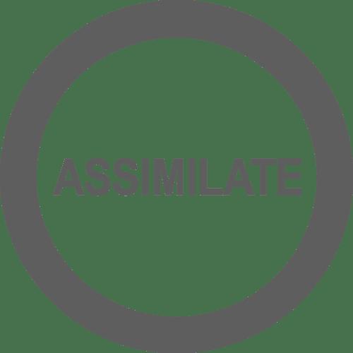 Assimilate Inc.