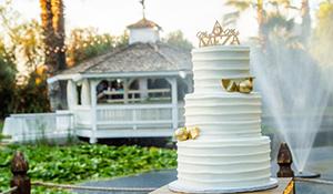 Beautiful Whit e Three Tiered Cake
