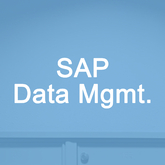 SAP Data Management Overview