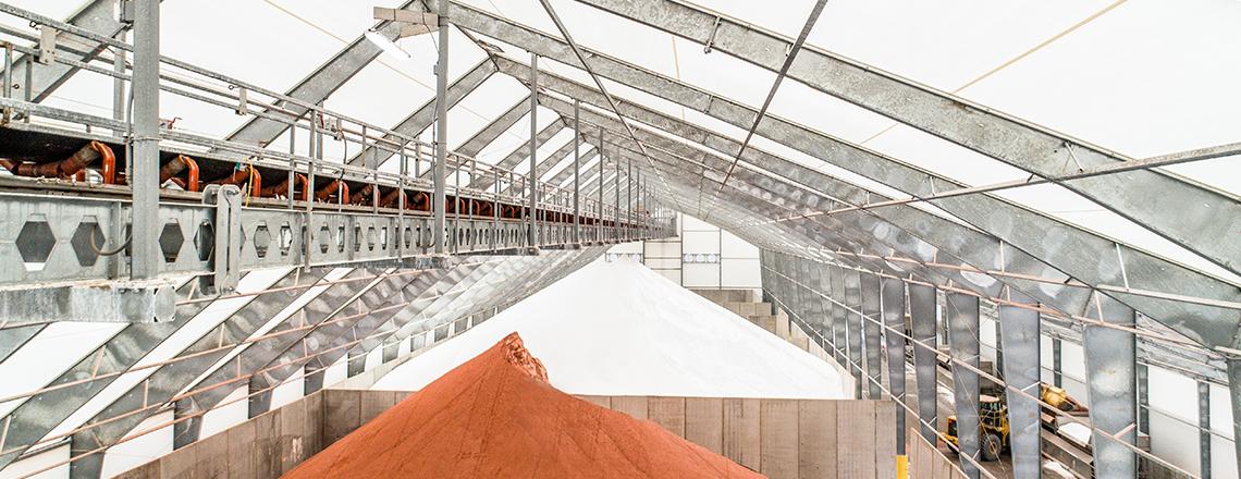 conveyor in bulk storage building