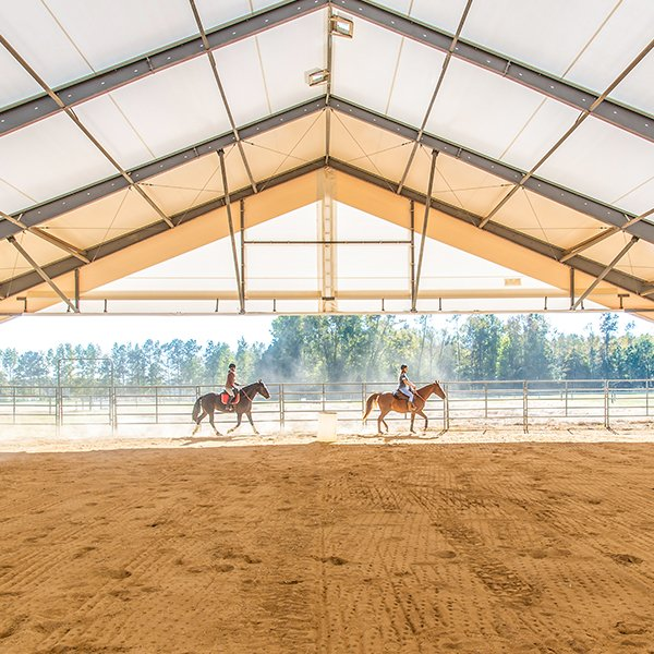 Horse and rider in a Legacy equestrian building