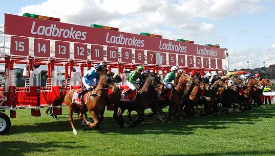 Celebrating the 100th running of the Cox Plate