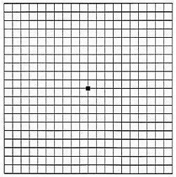 Amsler Grid to detect macular degeneration at Master Eye Associates, Austin, Round Rock, Cedar Park, Bee Cave/Lakeway