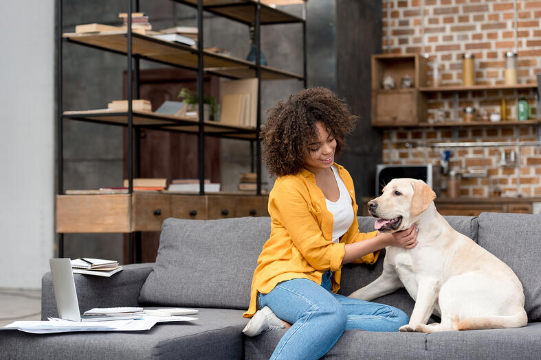 Pet Screening Matters for Your Rental! | Parrish Property Management Tips