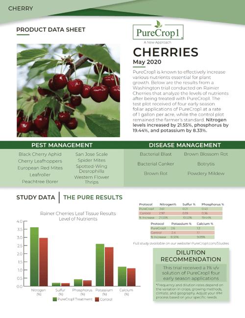 Cherry Report 2