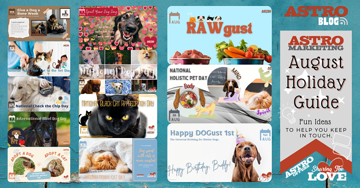 Pet Holiday Guide   August 2021