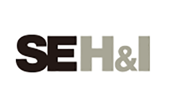 SE Holdings and Incubations Co., Ltd.